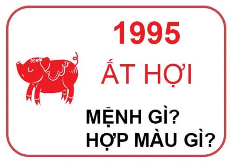sinh nam 1995 la menh gi